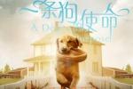 《一条狗的使命》终极预告海报双发 悟狗生真谛