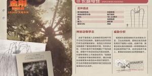 《金刚:骷髅岛》发预告海报 群兽乱战全面升级