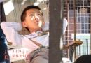 金马奖影片《八月》3.24上映 各大权威媒体力荐