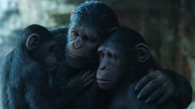 《猩球崛起3:终极之战》韩版沙龙网上娱乐片2