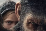 《猩球崛起3》曝全球新预告 生死决战一触即发
