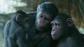 《猩球崛起3:终极之战》终极沙龙网上娱乐片