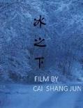 蔡尚君新片《冰之下》今夏上映 黄渤宋佳引期待