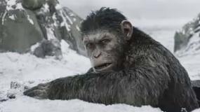 《猩球崛起3:终极之战》沙龙网上娱乐片 猿族崛起