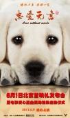 公益电影《忠爱无言》即将上映 老人与狗依偎