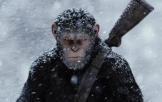 《猩球崛起3》再曝新角色预告片