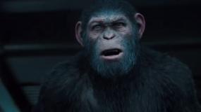 《猩球崛起3:终极之战》日版沙龙网上娱乐片