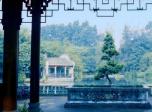 《顺德人家之合家欢》曝预告 定档8.18温情上映