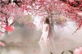 史航称周迅更适合演《三生三世十里桃花》女主角