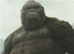 电影全解码:《金刚:骷髅岛》让经典焕发新活力