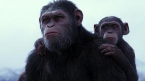 """《猩球崛起3:终极之战》""""领袖凯撒""""版沙龙网上娱乐"""