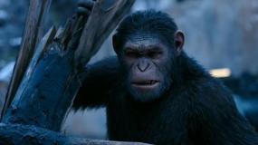 《猩球崛起3:终极之战》中国独家沙龙网上娱乐片