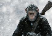 """《猩球崛起3》北美失利 内地市场将成""""救世主""""?"""