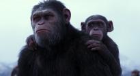 """《猩球崛起3》""""感性的凯撒""""片段"""