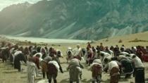《金珠玛米》定档沙龙网上娱乐片