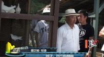 《追捕》幕后首度曝光 《兄弟,别闹!》在京首映
