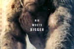 《狂暴》首曝海报 巨石强森与怪兽猩猩同框亮相