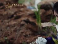 《七月半3》发终极沙龙网上娱乐 女巫灵魂出窍蛊惑人心