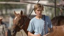 《赛马皮特》预告片 讲述男孩与马的故事