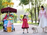 沙龙网上娱乐《小狗奶瓶》定档2月2日 萌犬守约漫漫回家路