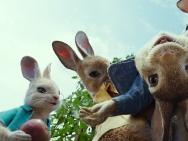 《比得兔》北美2月9日上映 全球最红兔子登银幕