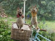 电影版《比得兔》即将上映 乡间扛霸子智斗人类
