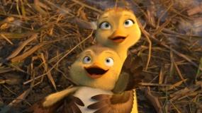 《妈妈咪鸭》曝正片片段 龟兔赛跑竟有新结局