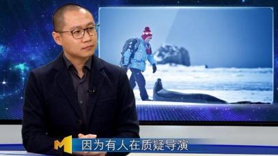 《南极之恋》导演回应质疑 坚持之后终有美好
