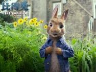 《比得兔》北美口碑终解禁 笑点密集大获观众好评