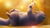 《猫与桃花源》寻子版预告片
