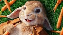 《比得兔》最新片段