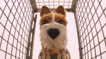《犬之岛》发布3支电视预告