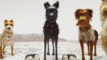 《犬之岛》曝光卡司访谈特辑