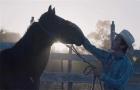 《骑士》预告片2