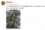郭德纲赴上海探望师胜杰:怹精神矍铄状态很好