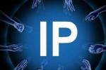 长江日报:大型IP失灵 市场将有望重新回归理性