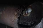 《小丑回魂2》进入筹备阶段 前作主创悉数回归