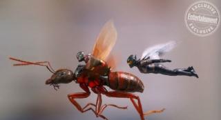《蚁人2》曝新剧照 蚁人、黄蜂夫妻档如影随形