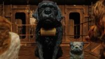 《犬之岛》豆蔻片段