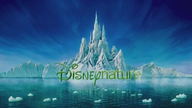 《企鹅》曝预告 迪士尼生态纪录片再现奇妙自然!