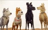 《犬之岛》海外口碑抢先看