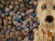 《犬之岛》获铁杆影迷力挺 五一继续热映不离不弃
