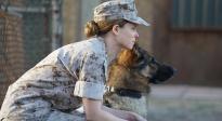 《战犬瑞克斯》在战火硝烟中带给我们的成长与感动