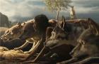 《森林之子毛克利》全球首款海报预告曝光