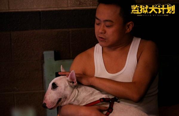 """《监狱犬计划》定档6.21 发布""""我要你""""预告海报"""