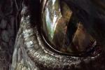 《侏罗纪2》曝新海报 史诗级大片怎能缺想象力?