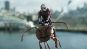 《蚁人2:黄蜂女现身》曝光第三支片段