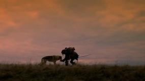 《阿尔法:狼伴归途》预告片