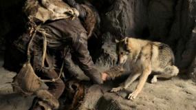 """《阿尔法:狼伴归途》发""""化险为谊""""特辑"""