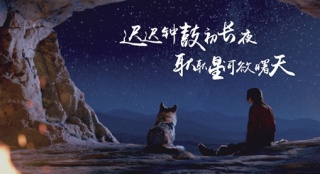 """《阿尔法:狼伴归途》点映 获赞""""画面美故事生动"""""""